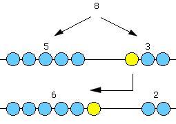 Zahlenraum 10 – Das Recheninstitut zur Förderung mathematischen Denkens