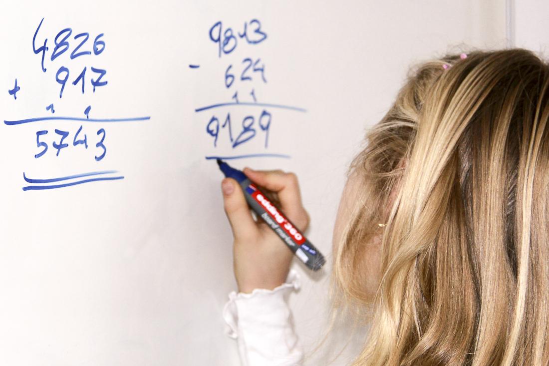 das recheninstitut zur förderung mathematischen denkens